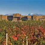Tupungato Winelands